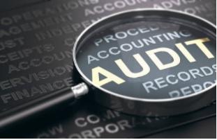 SEO-Website-Audit-Cairns-Port-Douglas